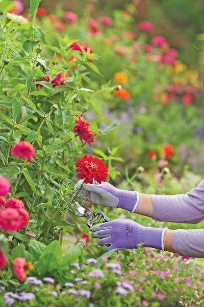 guanti giardinaggio multiuso