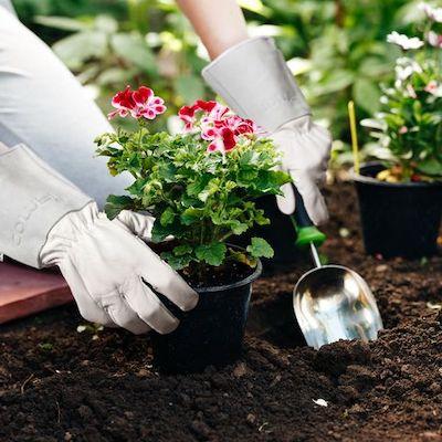guanti giardino similpelle