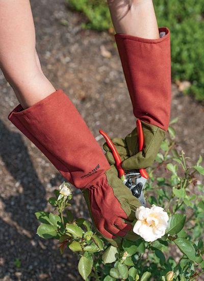 guanti potatura