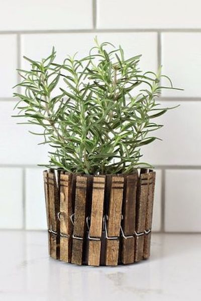 vaso erbe aromatiche