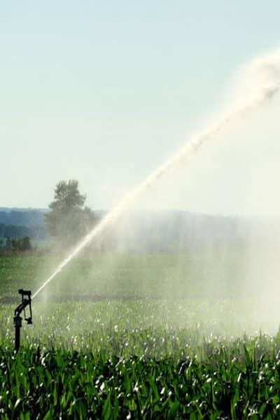 irrigatore a pioggia aspersione