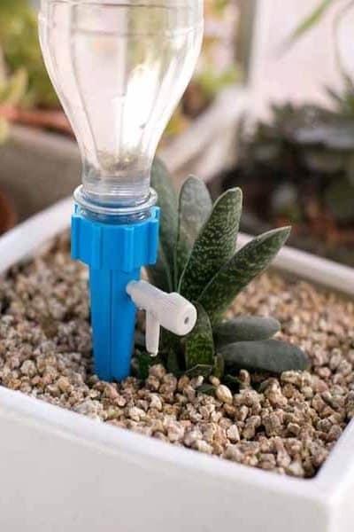 irrigatore vasi