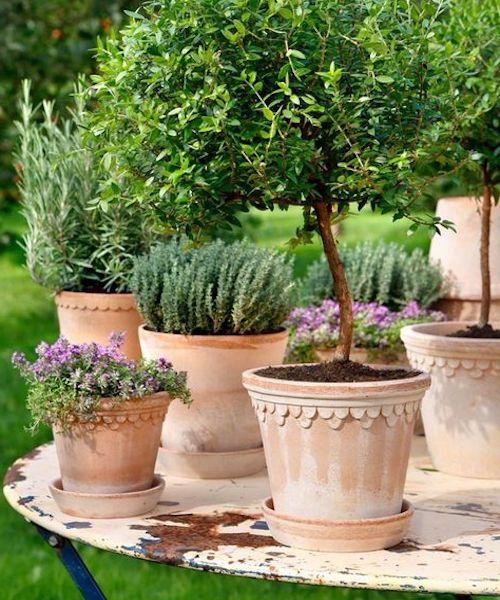 fioriere terracotta utilizzi