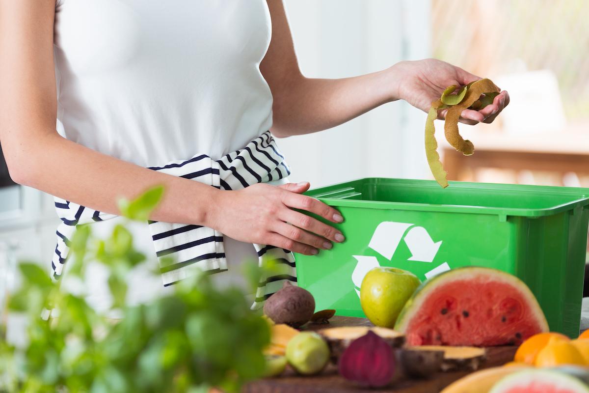 compost organico concime orto