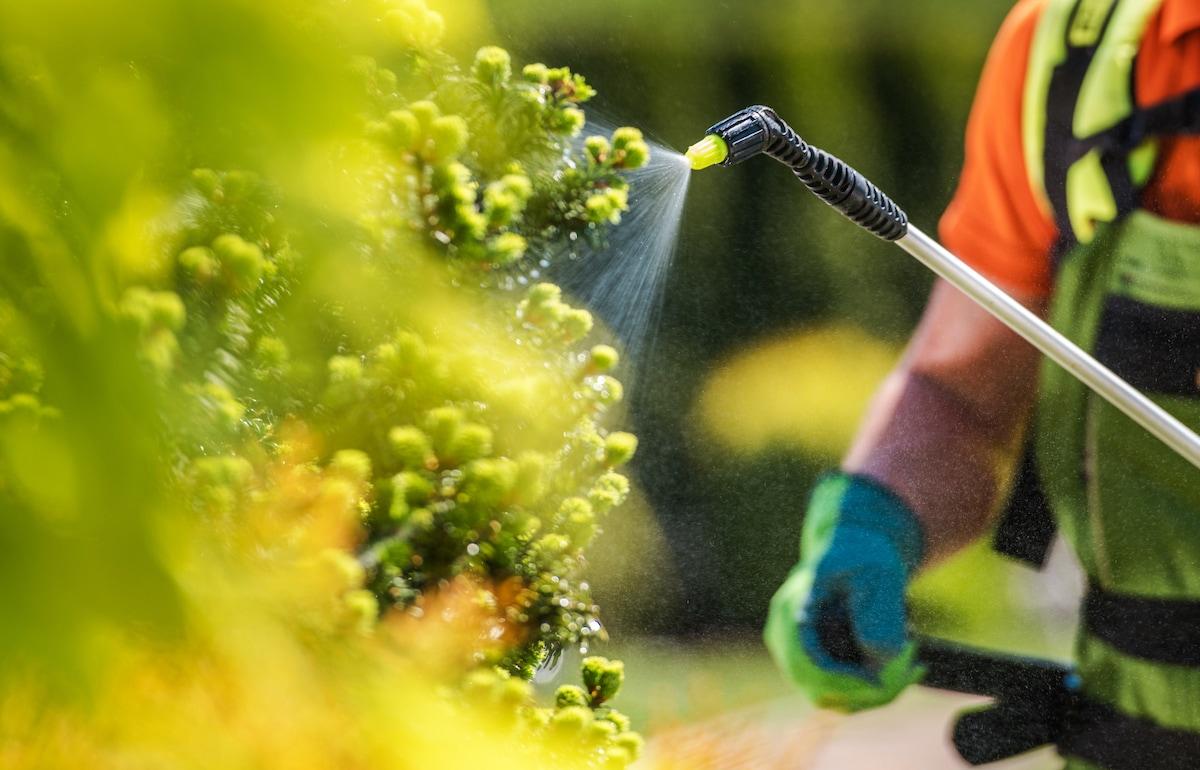 concimi chimici orto