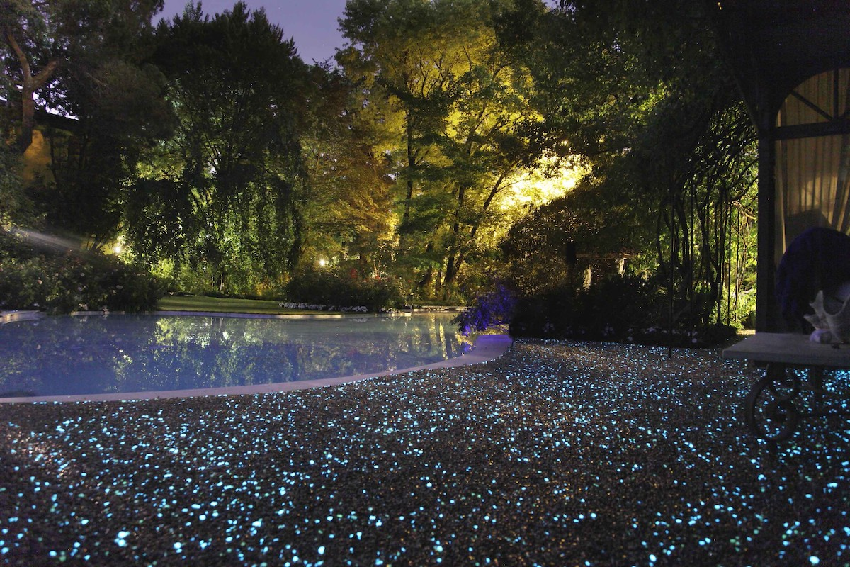 sassi fluorescenti giardino
