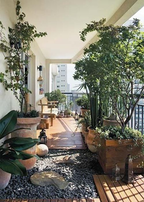 terrazzo piccolo piante